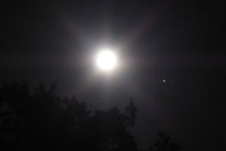 Full Moon – wisdom of dreaming