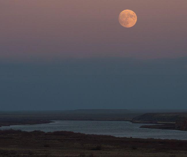November Full Moon