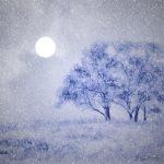 Full moon_ pezibear