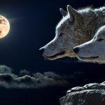 full moon balance