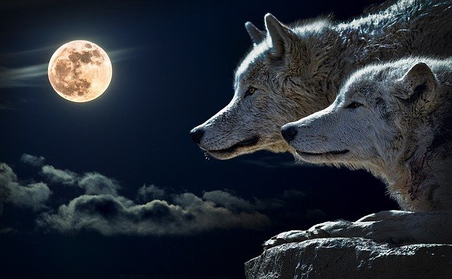 Full Moon – 28.03.2021